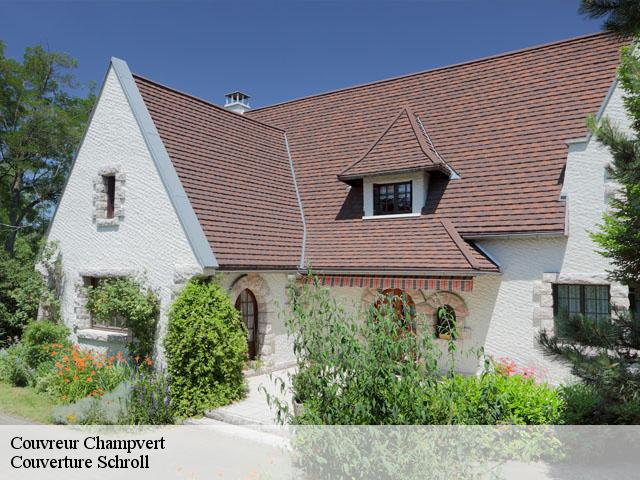 Couvreur  champvert-58300 Couverture Schroll